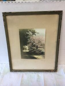 Antique Hand Colored Photo Mt Washington NH Landscape by Phinney in Nice Frame