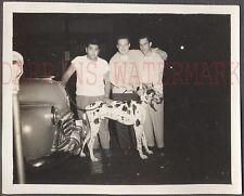Vintage Photo 3 Men & Harlequin Great Dane Dog 1946 1947 Oldsmobile Car 682687