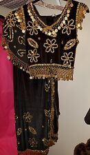 belly dance costume large