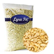 Lyra Weiß Blanchiert Erdnusskerne Wintervogelfutter 25kg