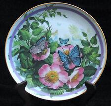 """Butterfly Garden #2 """"Common Blue"""" - Artist: Paul Sweany - Beautiful Butterflies"""