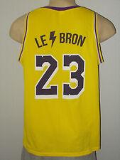 Lake Elsinore Storm Lebron James #23 Minor League Promo Basketball Jersey Men M