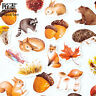 Stationary Paper Sticker Scrapbooking  Diary Label Fall Squirrel Stickers
