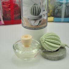 Ocean Breeze Fragrances Oil Cactus Diffuser 100ml 3.4 oz Gift Event Home Decor