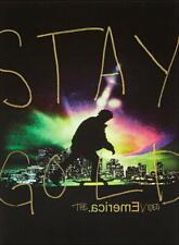 STAY GOLD DVD - skateboard video - EMERICA - skateboarding