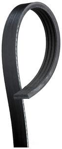 Serpentine Belt  ACDelco Professional  4K476