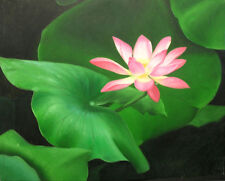 FLORAL Orignal - Pink WATERLILLY - FRAMED  61x51 cm