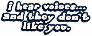 I Hear Voices - They Don't Like You Shirt, sarcastic t shirt, funny tee, Sm - 5X