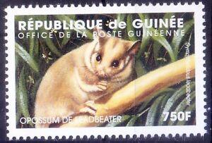 Guinea 1998 MNH, Leadbeater's possum, critically endangered Wild Animals