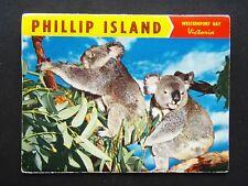 PHILLIP ISLAND WESTERNPORT BAY VICTORIA POSTCARD