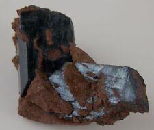 VIVIANITE CRYSTALS - 4.6 cm - TOMOKONI ADIT, BOLIVIA 22714