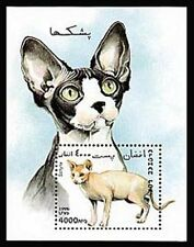 Afghanistan 1417X, MNH, 1996, S/S, Cats, Animals, 8FXX