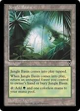 JUNGLE BASIN Visions MTG Land Unc