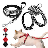 Soft Leather Dog Harness and Leash set Small Puppy Cat Bowknot Walking Vest Lead