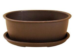 Bonsaischale Kunststoff mit Untersetzer, oval, 16 x 12,5 x 6 cm # BSK-003
