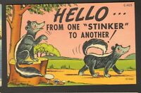Unused Postcard Comic Hello from one Stinker to another Skunks Curt Teich