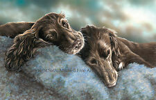 Chocolate Cocker Pups Ltd Edition Print by P Doyle We won't be beaten on price