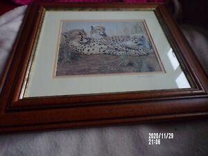 """Mark Chester Wildlife Artist Signed Framed Print 9.5"""" x 7.5"""""""