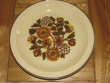 Unboxed Earthenware Poole Pottery Dinner Plates