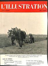 Pelouse champ de courses de Saint-Cloud jardins ouvriers  WWII 1941 ILLUSTRATION