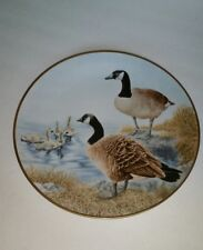 Waterbird Plate by Danbury Canadian Goose by Eric Tenney