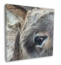 """New Donkey Close-up 12""""x12"""" Wall Art Canvas Decor, Picture Print, DONK-1-C12"""