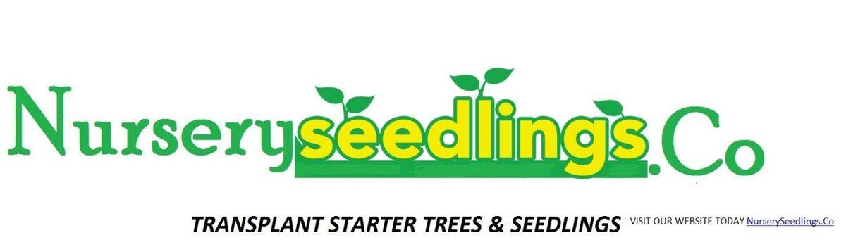 NurserySeedlings.Co