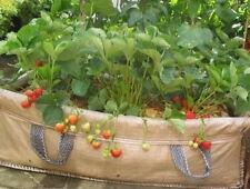 Good Value 130 ltrJumbo Growbags Ideal Vegetable/Salad Planter