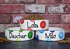 Large Personalised  Hand Painted Ceramic dog puppy animal pet bowl dish feeder