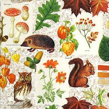 4x Paper Napkins for Decoupage Autumn Classic