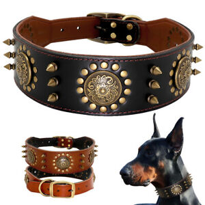 Luxury Studded Genuine Leather Dog Collar for Large Breed Doberman Pit Bull L XL