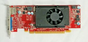 Lenovo GT620 1GB 64bit PCI-E VGA DisplayPort Video Card FRU 03T7122 LOW PROFILE