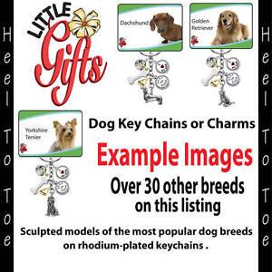 LITTLE GIFTS DOG BREED KEYRING U CHOOSE Key ring Chain Charm Gift