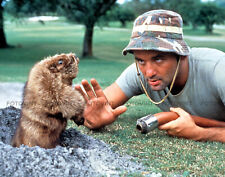CADDYSHACK Photo BILL MURRAY GOPHER Golf Movie Picture Print in 8x10 or 11x14