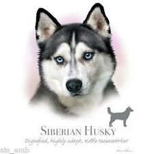 Siberian Husky Dog HEAT PRESS TRANSFER for T Shirt Tote Sweatshirt Fabric #911h