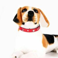 Star Studded Pet Dog Collar Leather Puppy Collars for Small Medium Dogs Cat Neck