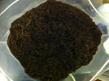 Pollywog Coco Fibre, 5L, READY TO USE. Humus Coconut Coir Reptile Frog Substrate