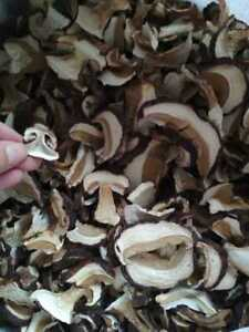 Dried Sliced Porcini (White/Borowik) Mushrooms 1kg