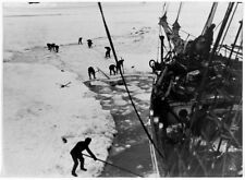 Endurance Expedition : Shackleton : Antarctica :  Archival Quality Print