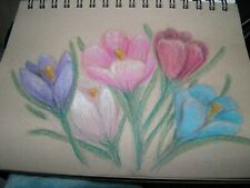 colored pencil drawing flowers crocus