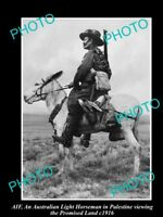 OLD LARGE HISTORICAL PHOTO OF AIF ANZAC, THE AUST LIGHT HORSE IN PALESTINE c1916