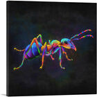 ARTCANVAS Ant Insect Bug Pest Control Canvas Art Print