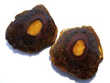 Genuine Australian Boulder Opal Yowah Nut Split Specimen   (2379)