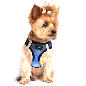 American River Choke Free Dog Harness Ombre Collection - Midnight Sky   XXS-3XL