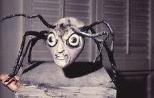 The Outer Limits 35mm film slide The Zanti Misfits spider alien