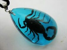 12 Pcs Black Scorpion Real In Blue Lucite Jewelry creepy gothic punk surfer