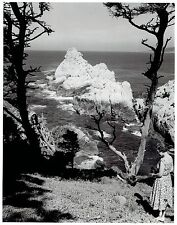 1960 Vintage Photo women works on her camera at Point Lobos Reserve California