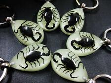 24pcs glow in the night black scorpion-king nightlight drop gift keychain