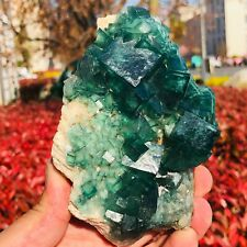 Natural Rare Green Cube Fluorite crystal Mineral Specimen stone healing 610g