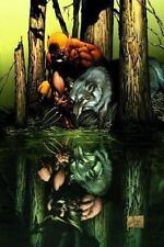 Wolverine: Origins, Vol. 1: Born In Blood (V.1) by Way, Daniel